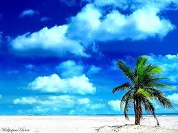 vacaciones3