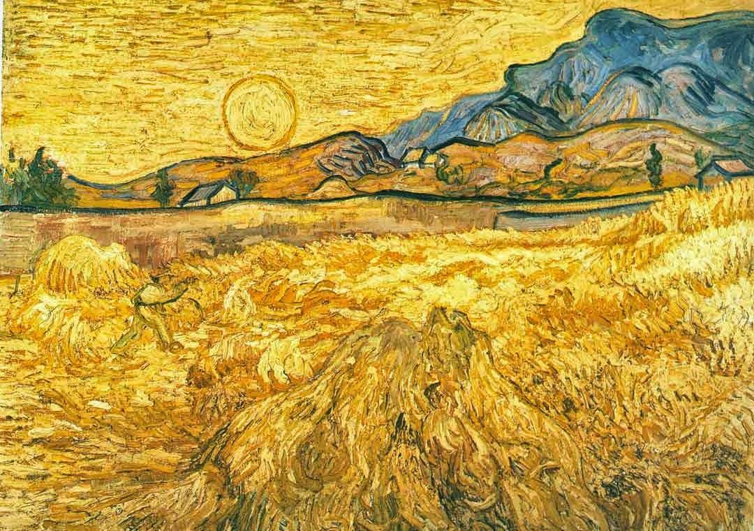 vangogh-wheatfield--saint-rémy